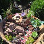 riverton-utah-garden-nursery-11