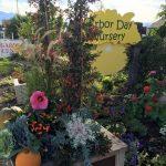 riverton-utah-garden-nursery-14