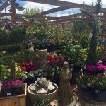 riverton-utah-garden-nursery-15