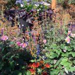 riverton-utah-garden-nursery-22