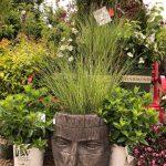 riverton-utah-garden-nursery-41