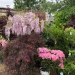 riverton-utah-garden-nursery-42