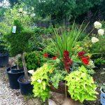riverton-utah-garden-nursery-47