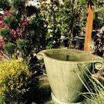 riverton-utah-garden-nursery-6