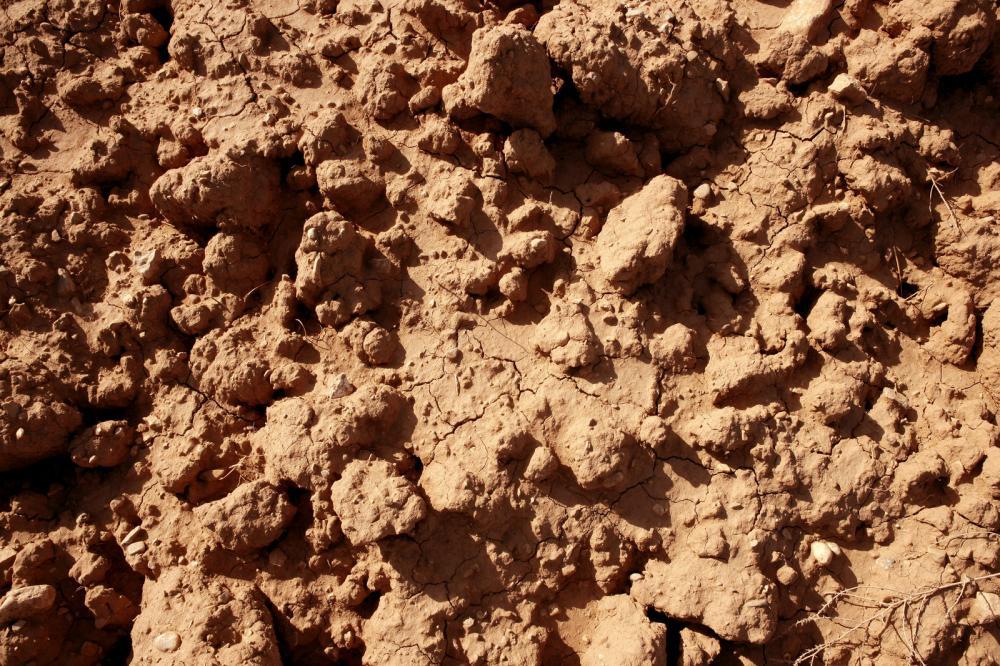 utah-clay-soil